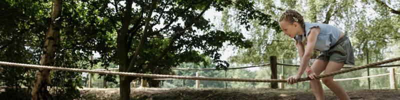 <h4>Wat is er te doen in het Safaripark?</h4>