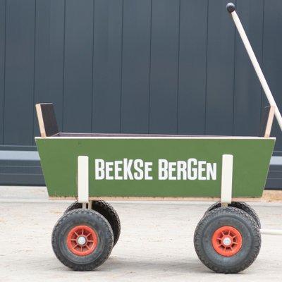 <h4>Bollerwagen</h4>