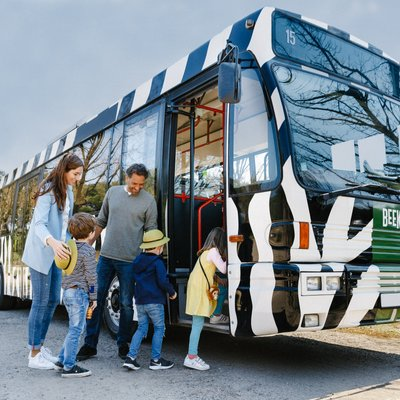 <h4>Discover fun and exciting facts during the bus safari</h4>