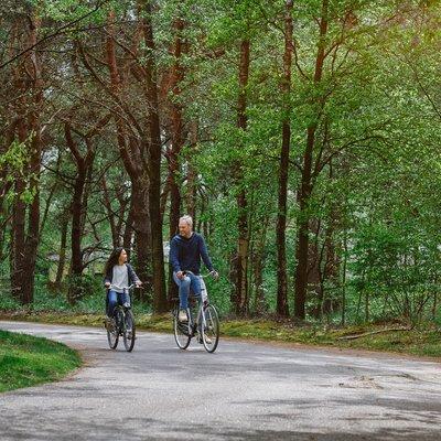 """<h4>Een fietstocht door de prachtige natuur</h4>  <p><a class=""""btn btn-green"""" href=""""https://www.beeksebergen.nl/overnachten/vakantiepark/bij-te-boeken/fietsarrangement"""">Ontdek meer</a></p>"""