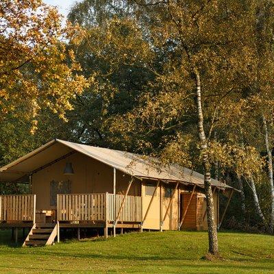 <h4>Luxe kamperen</h4>