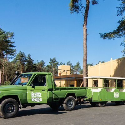 <h4>Kostenloser Transport<br /> im Safari Resort</h4>