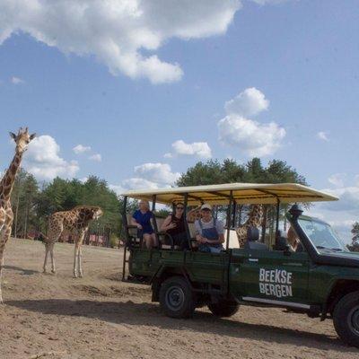 <h4>Op safari met&nbsp;<br /> een Gamedrive</h4>