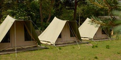 <h4>Rangercamp</h4>