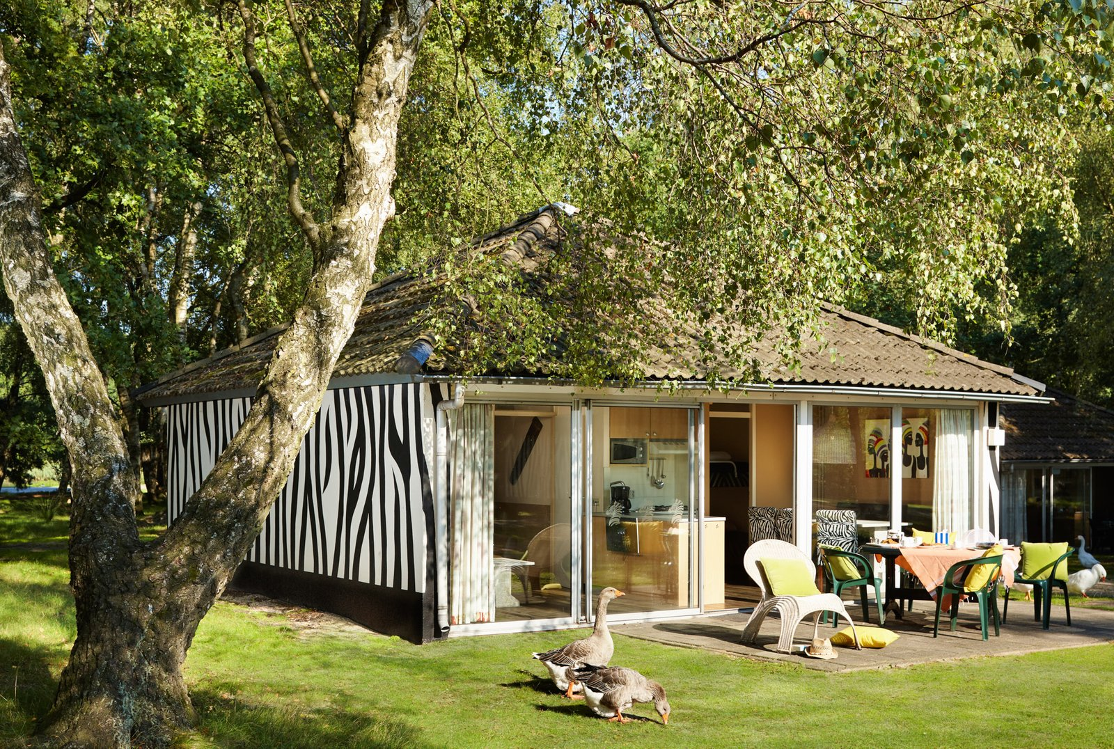 6 persoons bungalow nederland